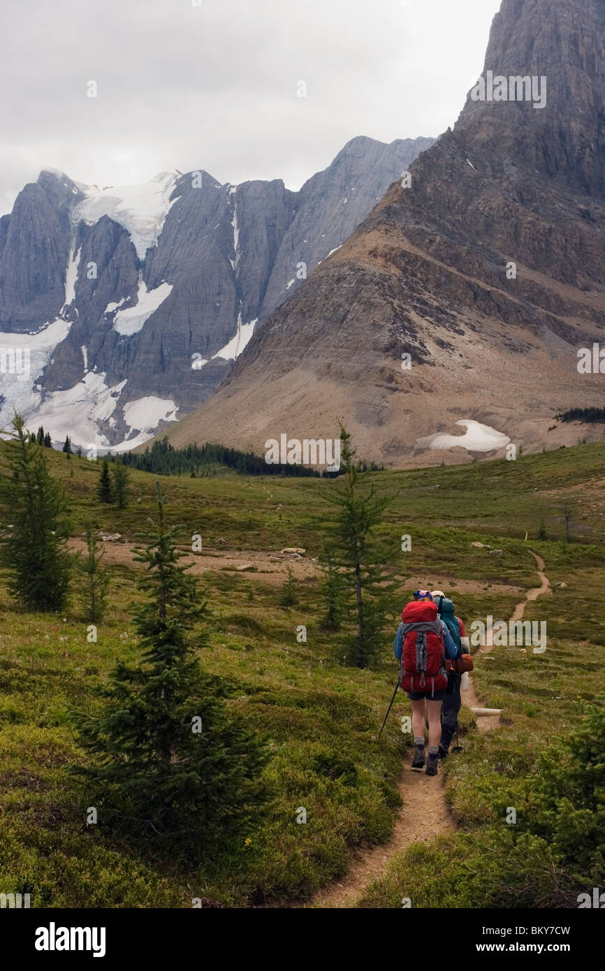Two backpackers hike towards the towering limestone cliffs and glaciers of the Rockwall Trail, Kootenay National - Stock Image