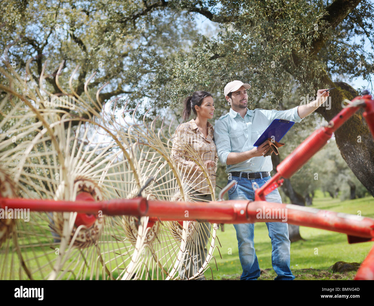 Man and woman on farm with hay rake - Stock Image