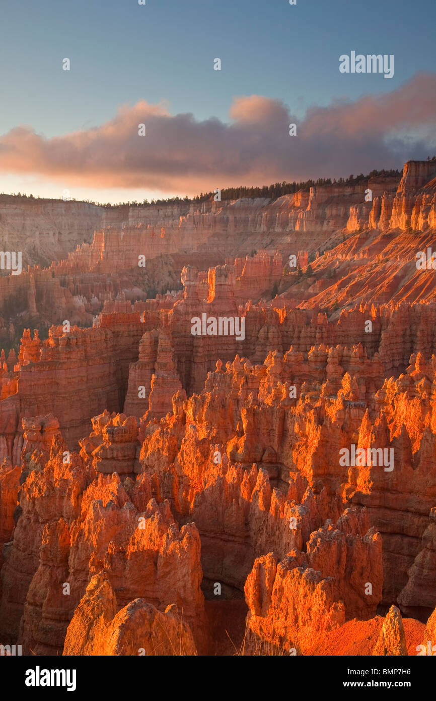 Sunrise at Bryce Amphitheater views from Sunset Point at Bryce Canyon National Park, Utah, USA - Stock Image