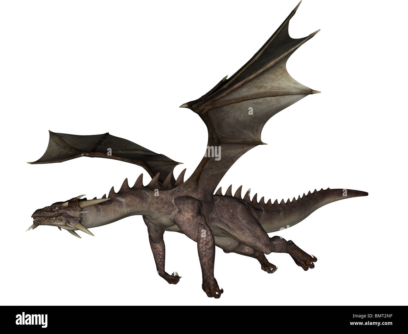 3D rendered flying dragon isolated on white background - Stock Image
