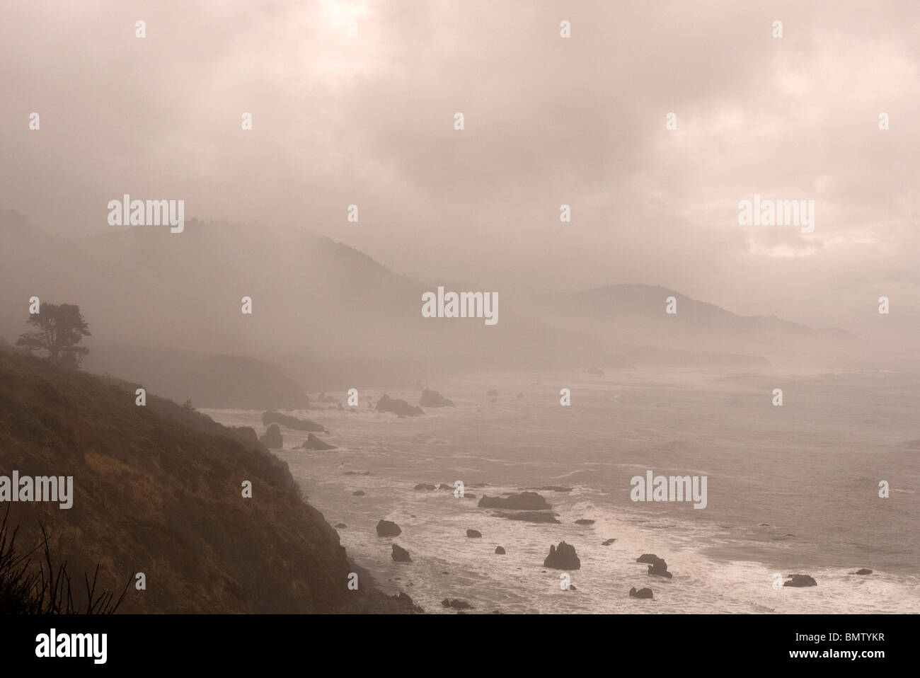 Northern Californian coast near Fort Bragg. USA - Stock Image