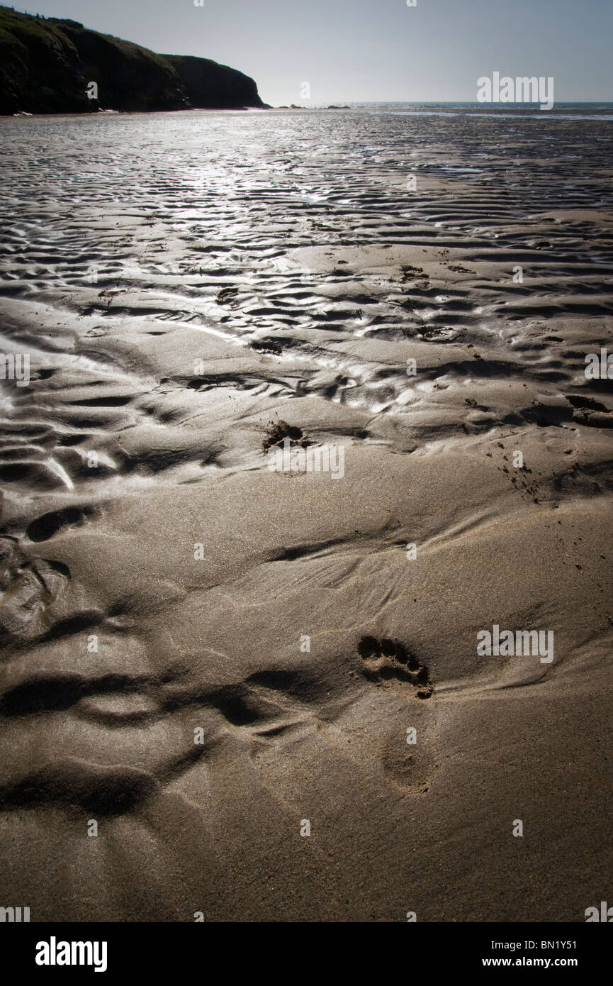 High contrast picture of patterns and footprint in the sand at Porthcothan Beach, St Merryn, Cornwall, UK - Stock Image