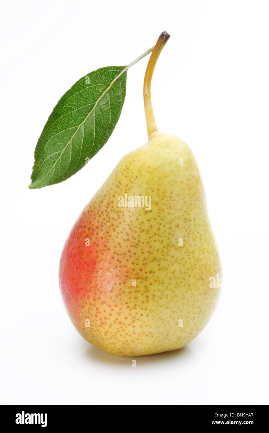 One ripe pear with a leaf. Isolated on a white background. - Stock Image