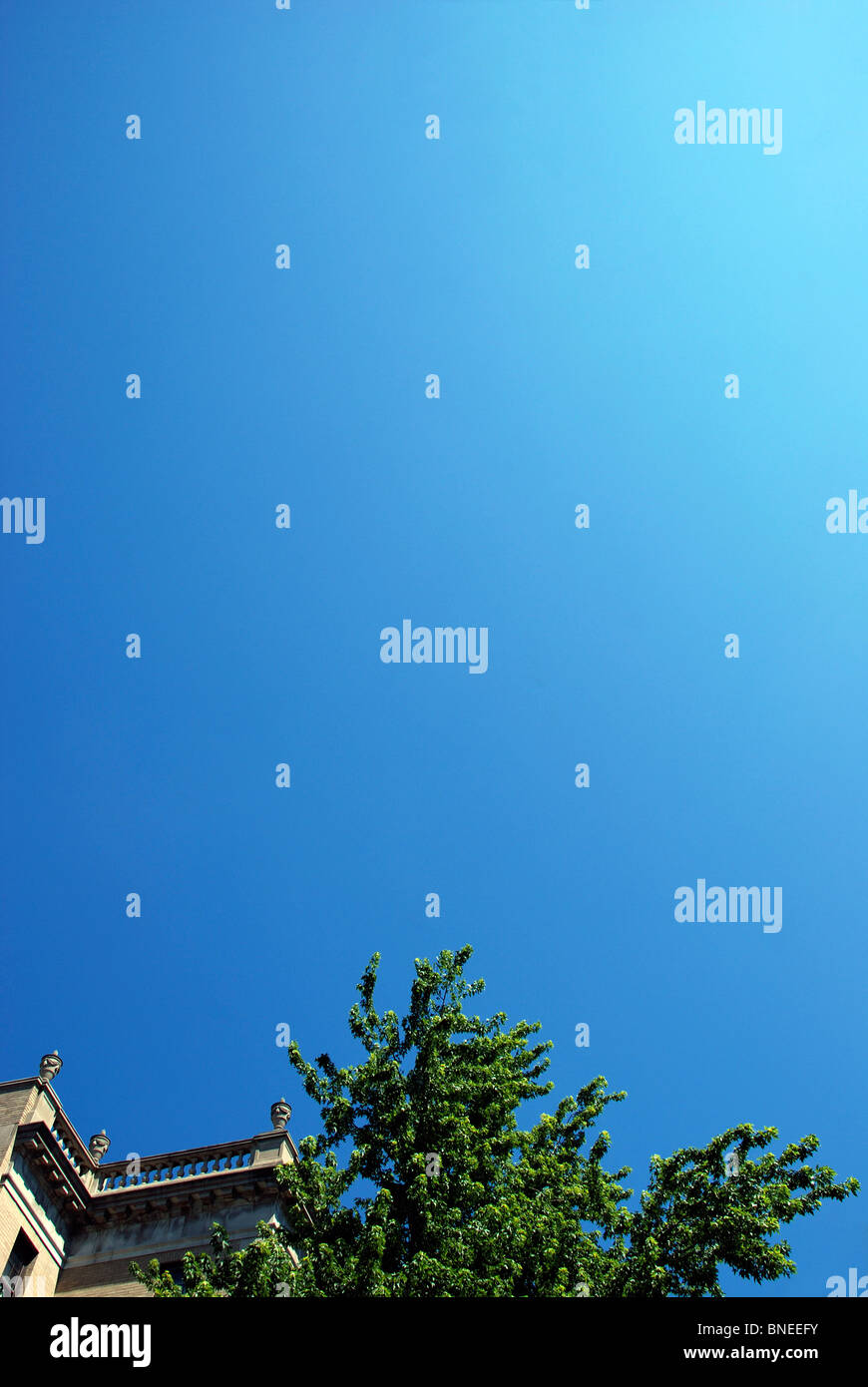 Old building and tree against blue sky - Stock Image
