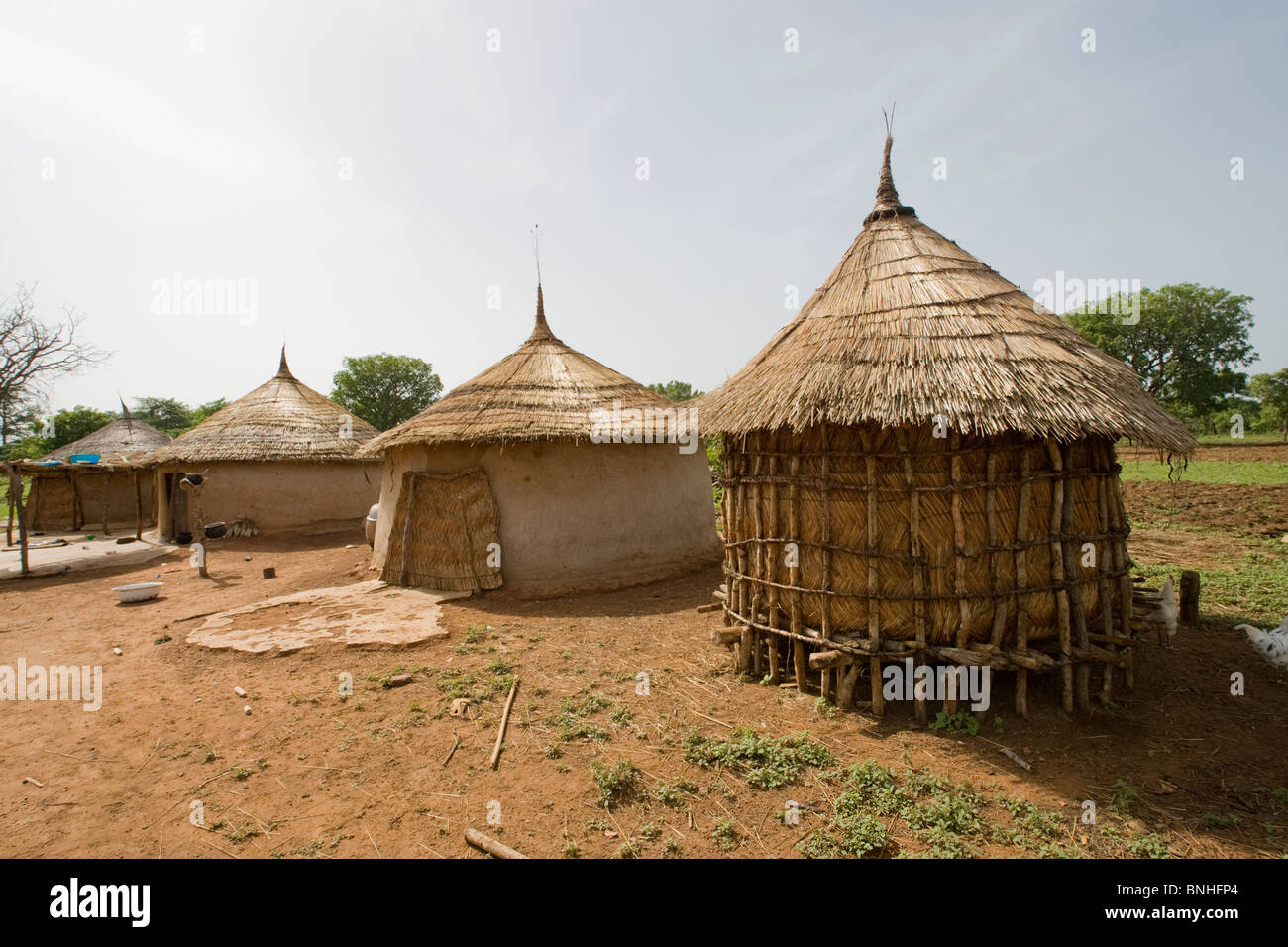 Food store in a Fulani household in the village of Sor No. 1, Gonja triangle, Damango district, Ghana. Stock Photo
