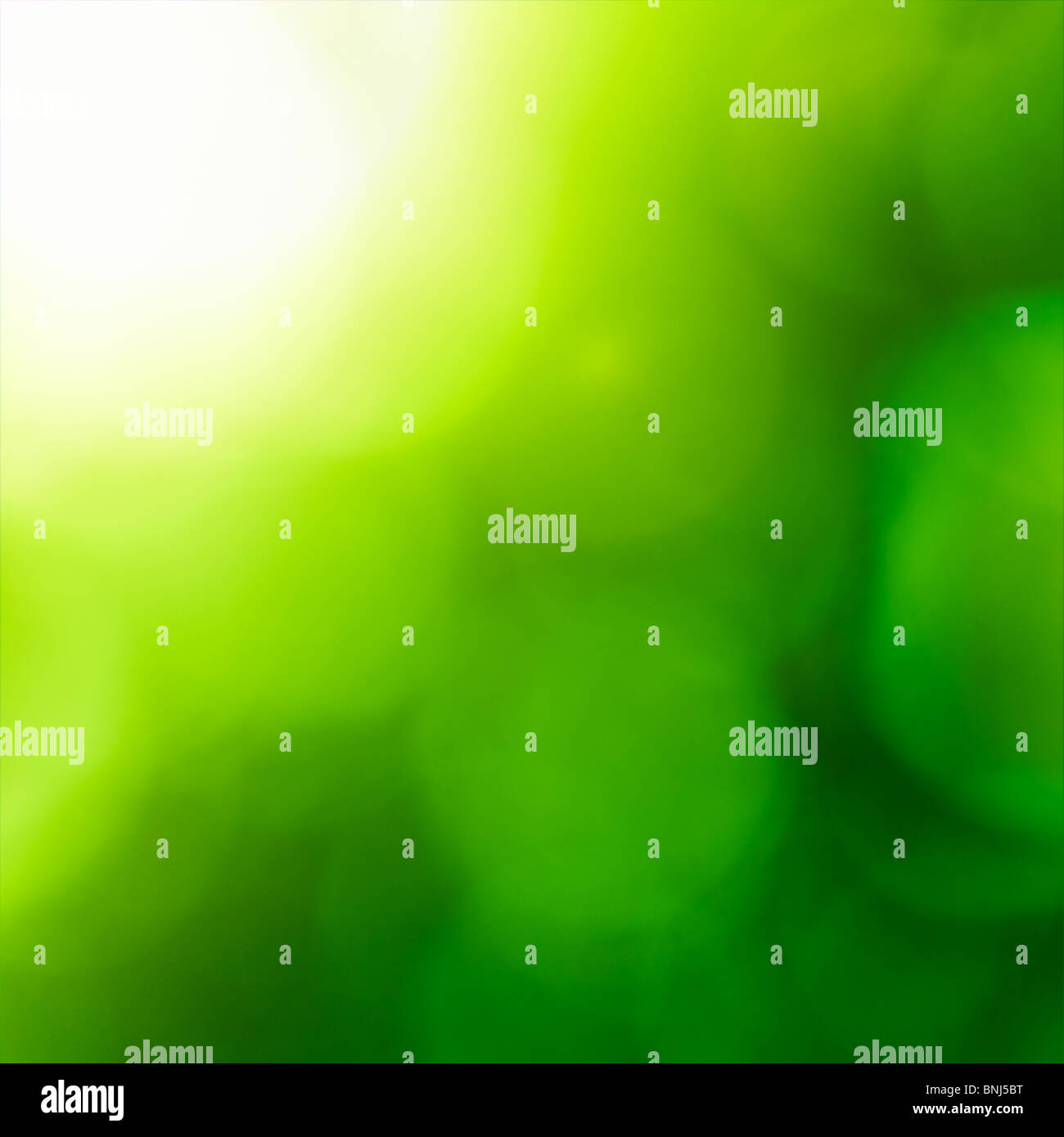 Abstract nature background (green bokeh). - Stock Image
