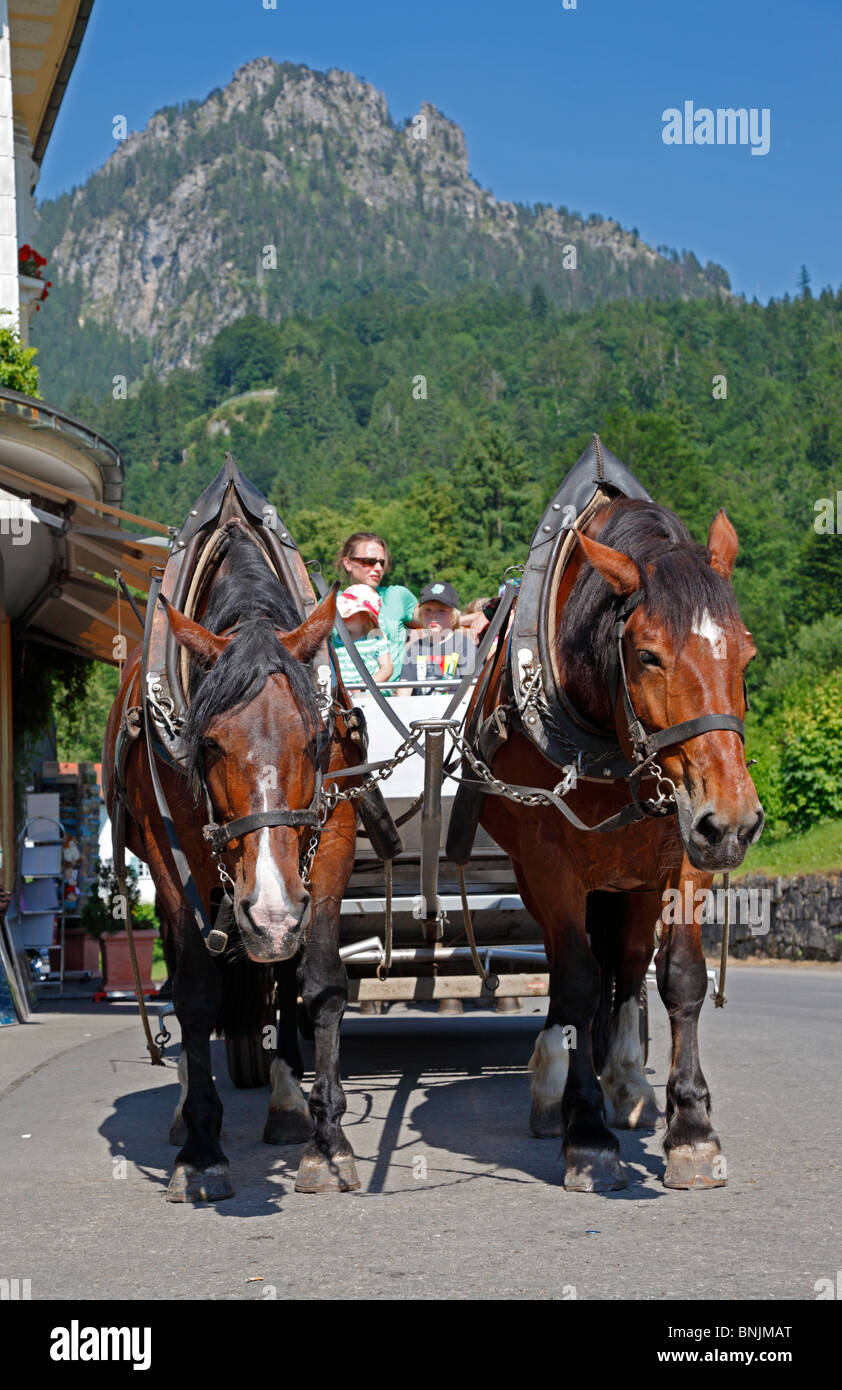 horse-drawn-carriage-for-hire-on-the-las