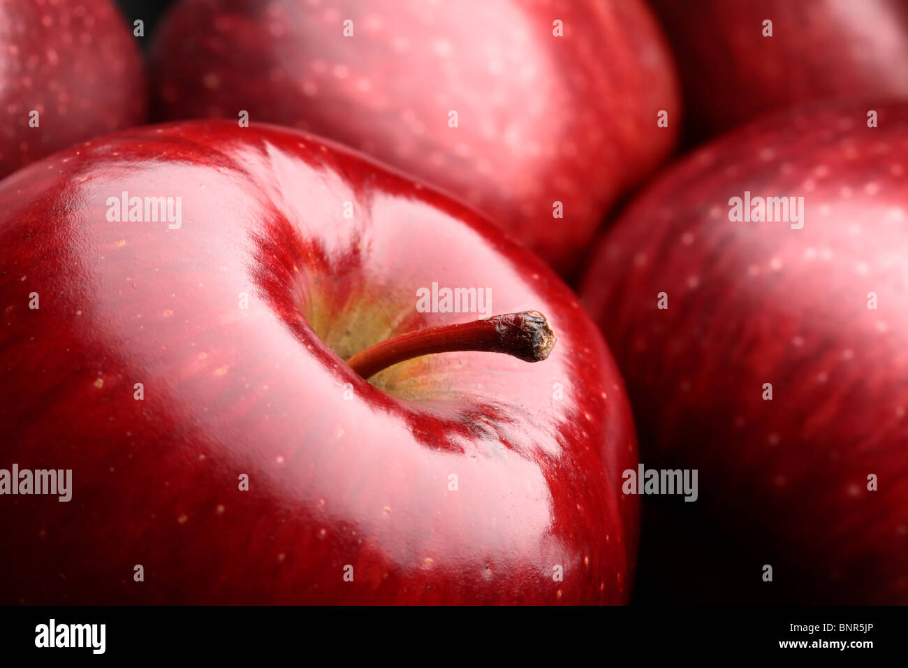 Close-up of fresh dark red apples - Stock Image