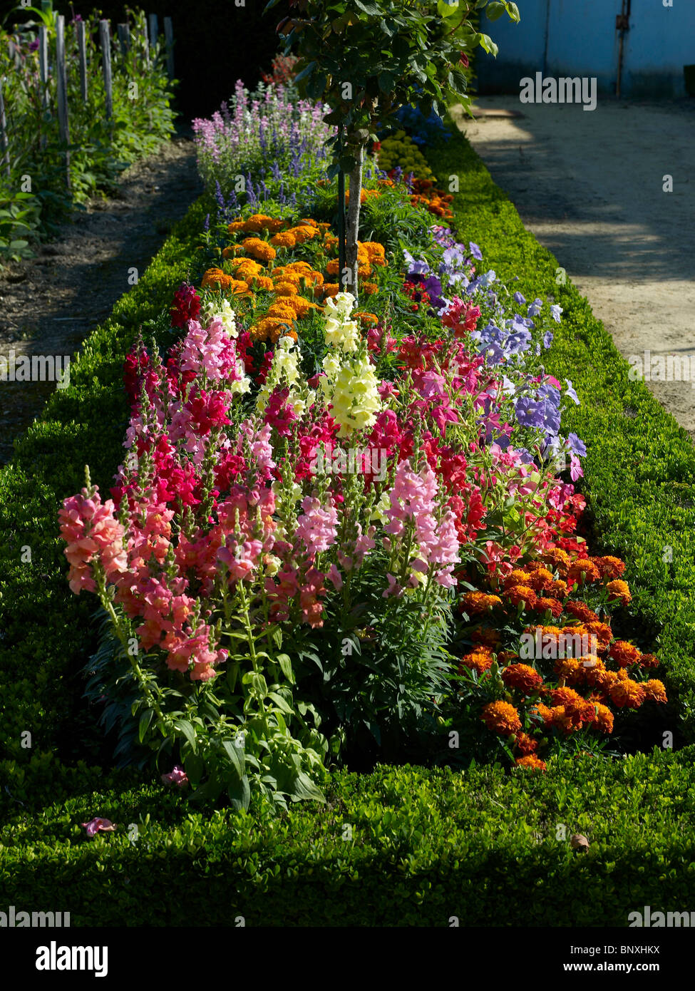Colourful Mixed Border In The Flower Garden At Bouges