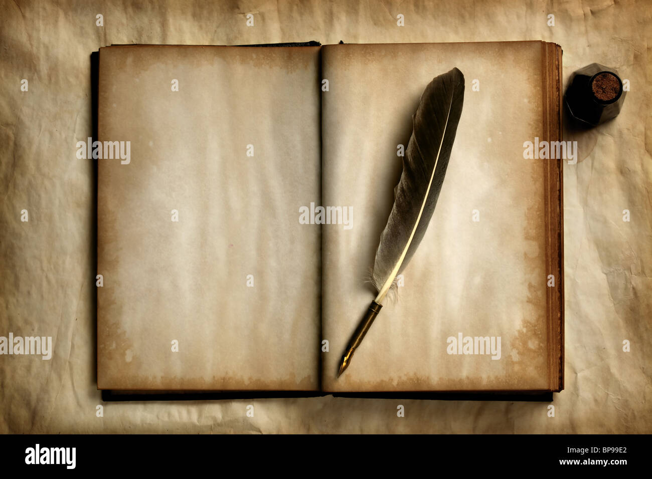 quill on old blank book stock photo 30937818 alamy