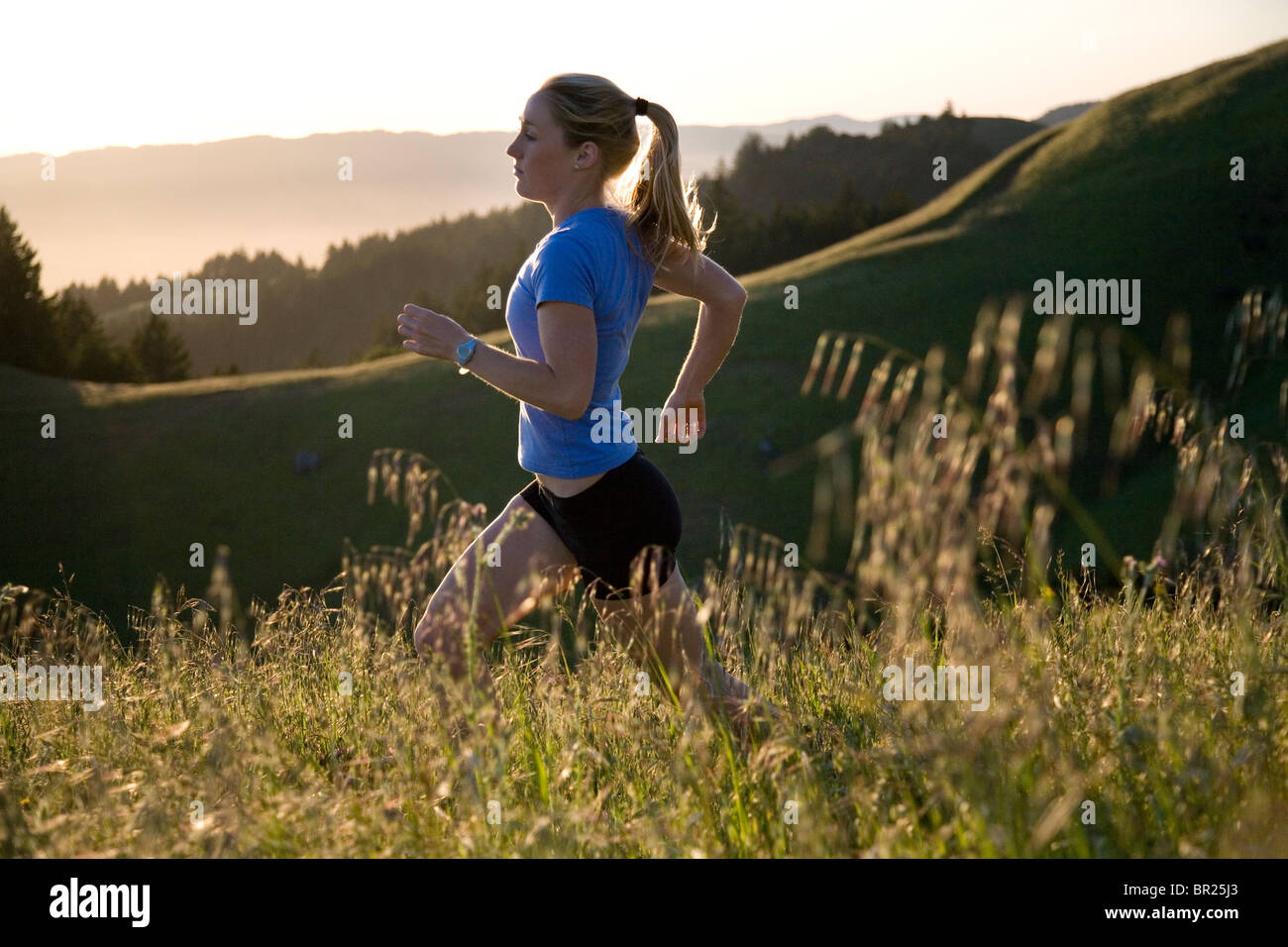 As sunset nears, a runner follows a tiny, single-track trail along the western slopes of Northern California's - Stock Image