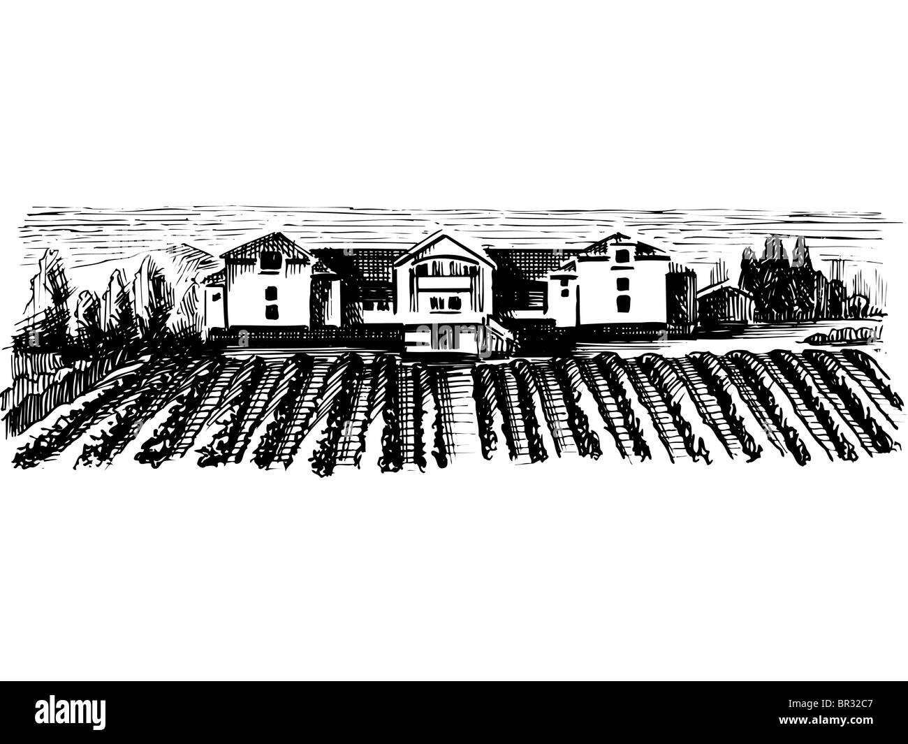 A black and white drawing of a farmland Stock Photo: 31415223 - Alamy for Farmland Sketch  58cpg