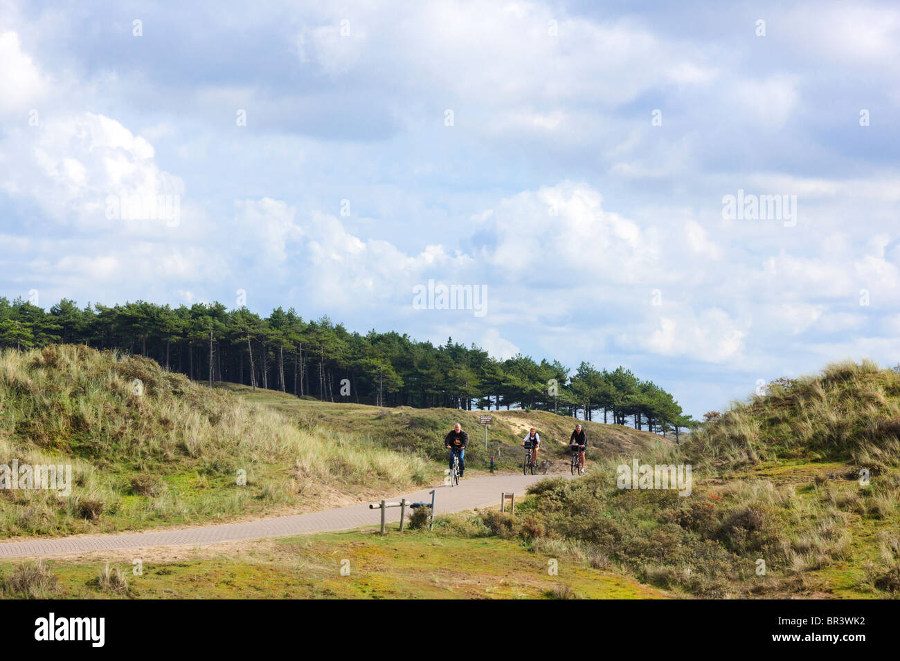 https://c7.alamy.com/comp/BR3WK2/bicycle-path-in-the-kennemerduinen-the-central-part-of-south-kennemerland-BR3WK2.jpg
