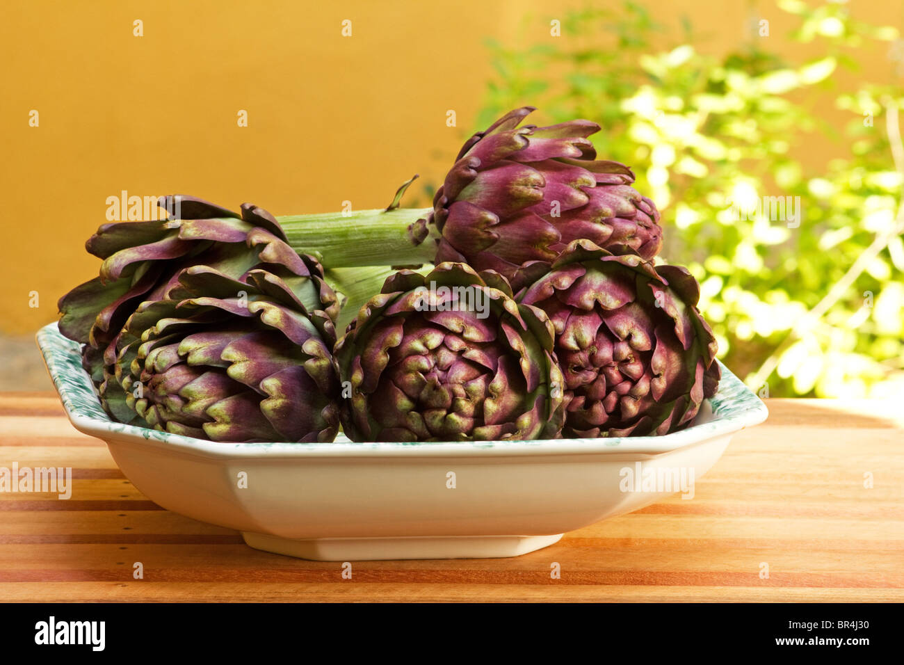 Purple artichoke in a ceramic bowl on a garden table (Cynara Stock ...