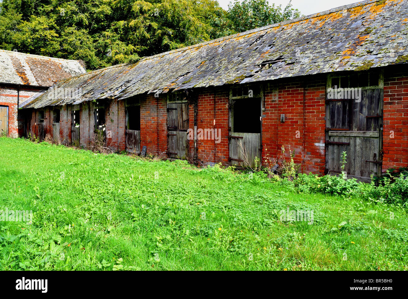 Derelict horse stables - Stock Image