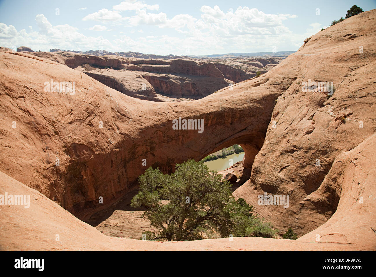 Jeep trail through Arches National Park, Moab, Utah, USA - Stock Image