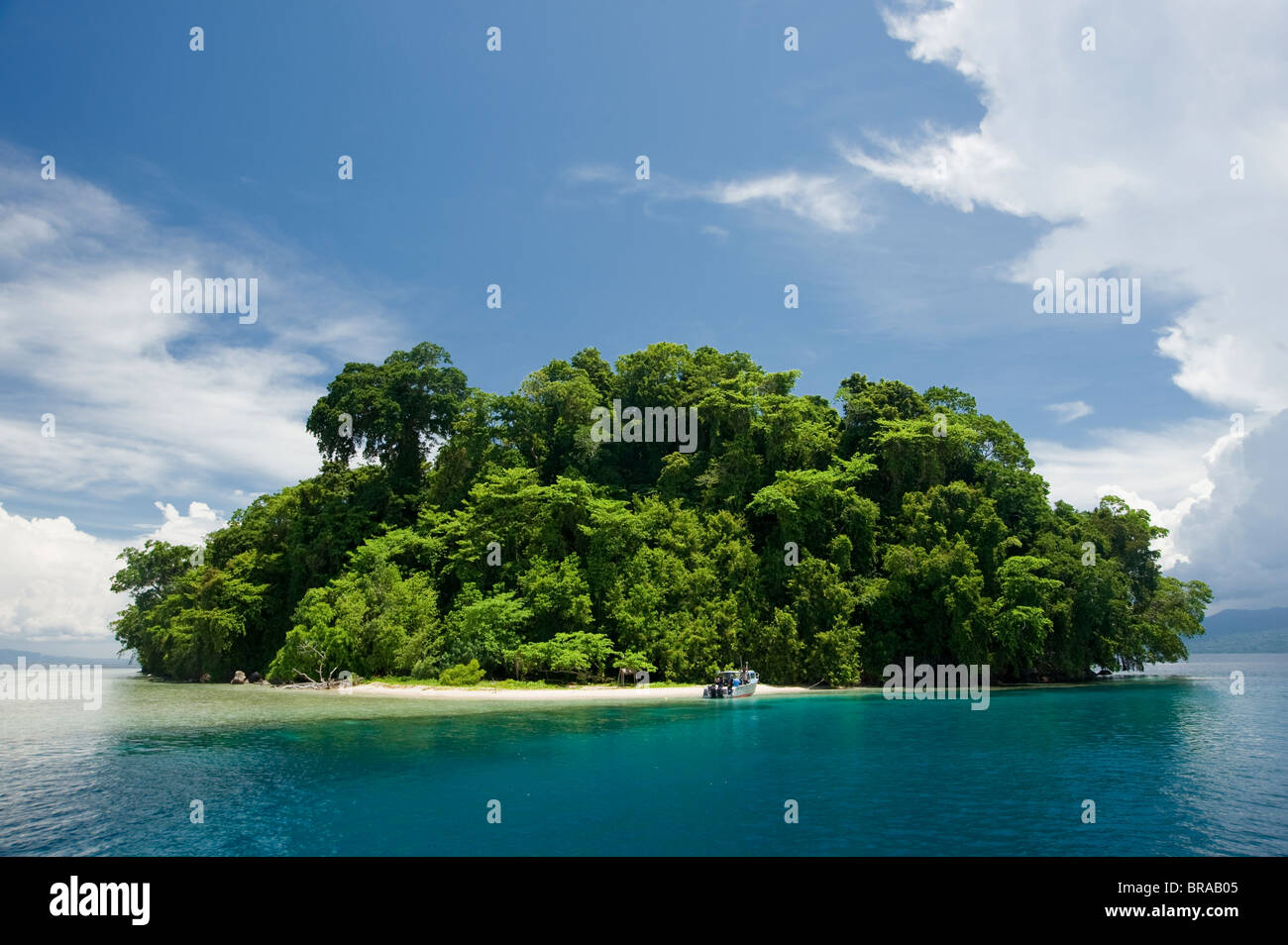 Restorf Island, Papua New Guinea. Indo-pacific - Stock Image