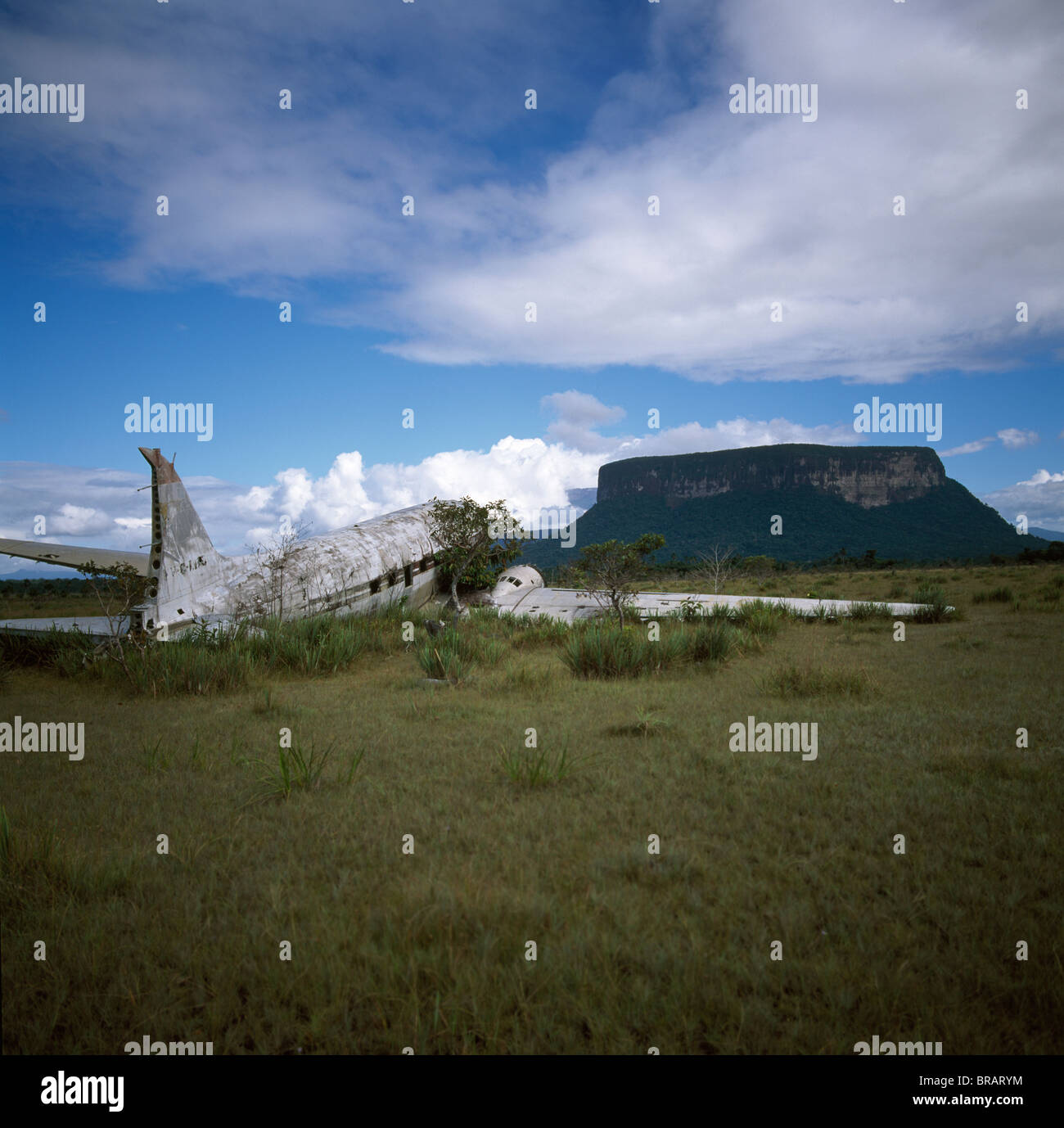 Crashed DC3 aircraft at Alto Carrao with Amauray-tepui in background, Gran Sabana, Estado Bolivar, Venezuela, South - Stock Image