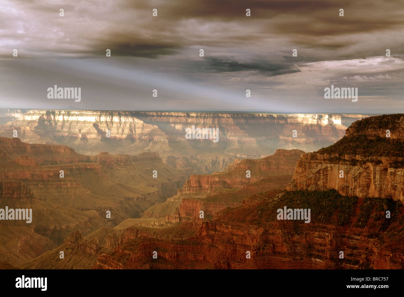 grand-canyon-at-sunrise-north-rim-arizona-usa-BRC757.jpg