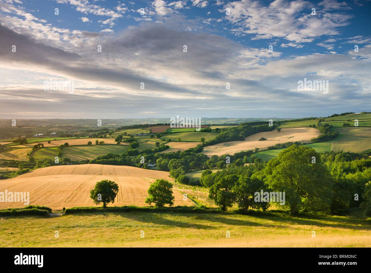 Beautiful sky above summer countryside, Raddon Hill, Crediton, Devon, England. Summer (July) 2010. - Stock Image