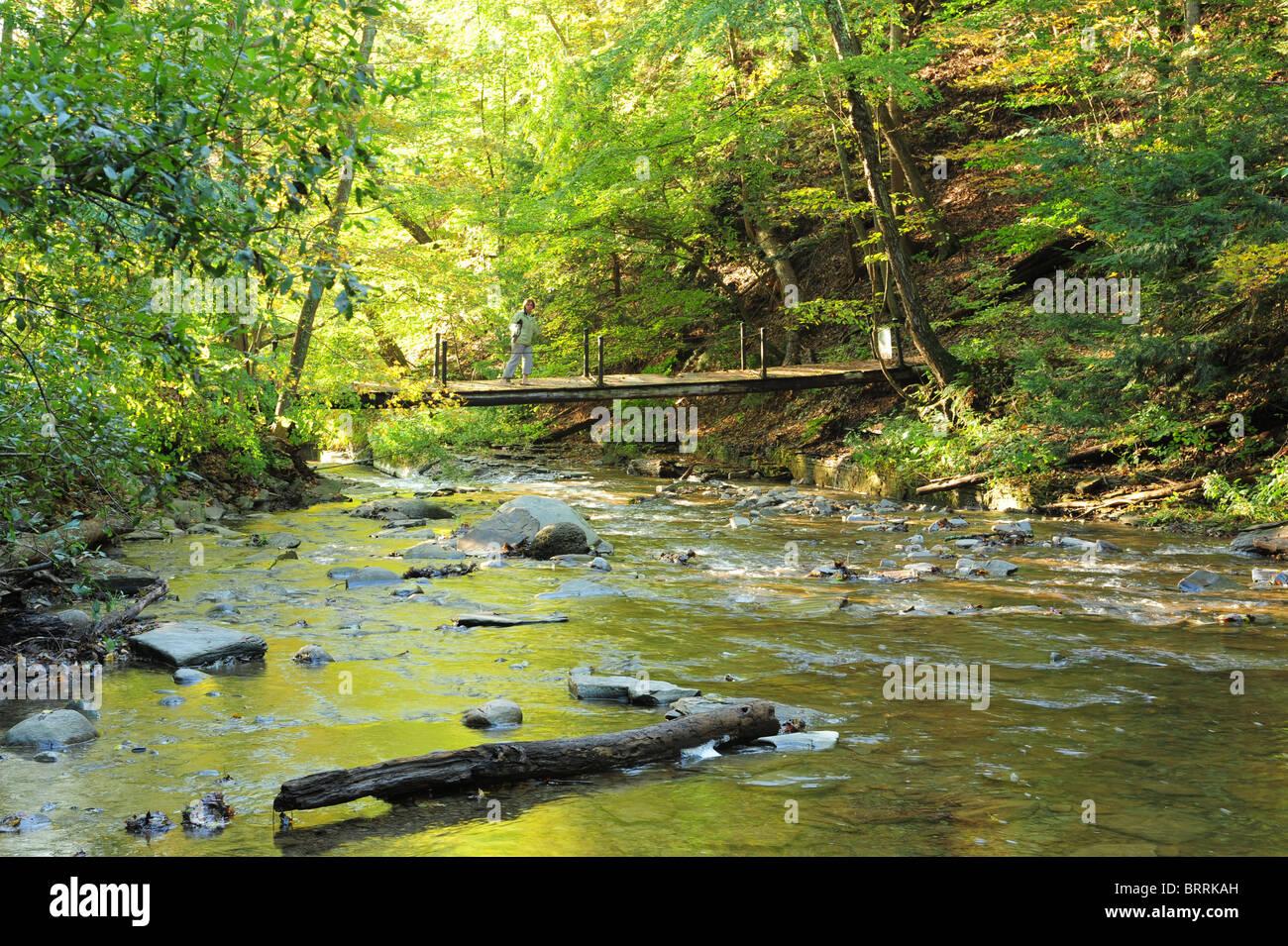 usa-new-york-naples-ny-grimes-glen-ontario-county-canandaigua-lake-BRRKAH.jpg