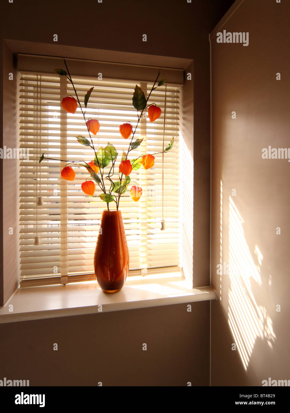Modern orange vase and orange flowers in a window behind a venetian blind Stock Photo
