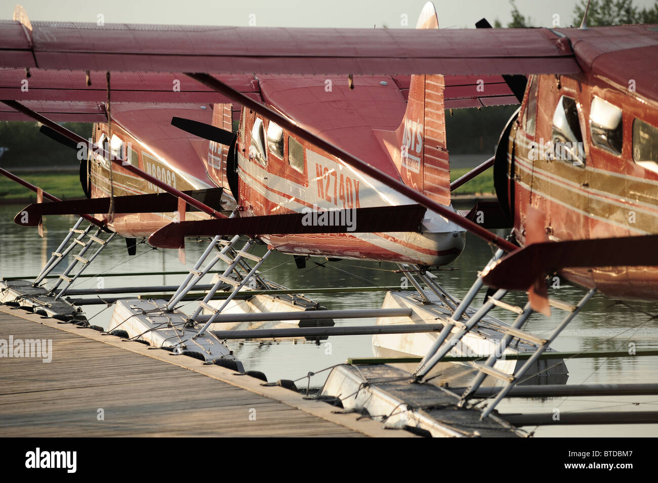 Group of Rust's Flying Service DeHavilland Beaver airplanes docked on Lake Hood in Anchorage, Southcentral Alaska - Stock Image