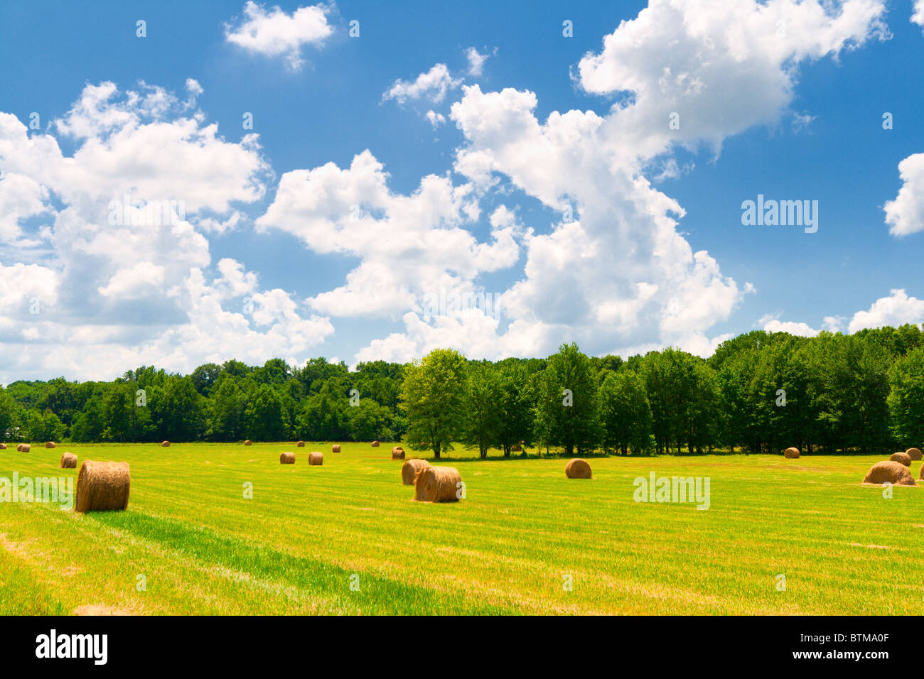 Hay bales in a green field with cloudy skies - Stock Image