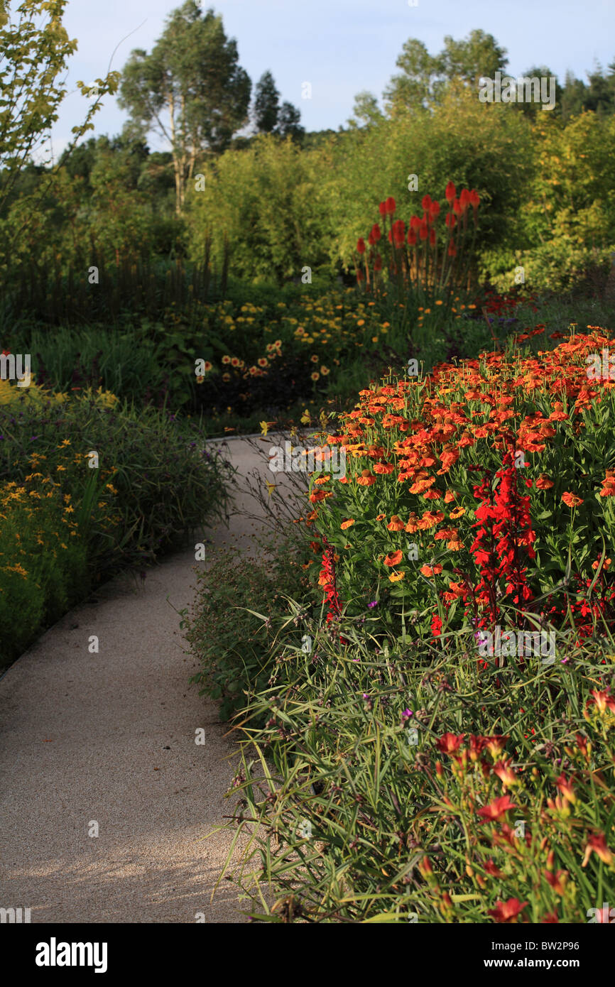 Path and herbaceous border in early August at RHS Gardens Royal ...