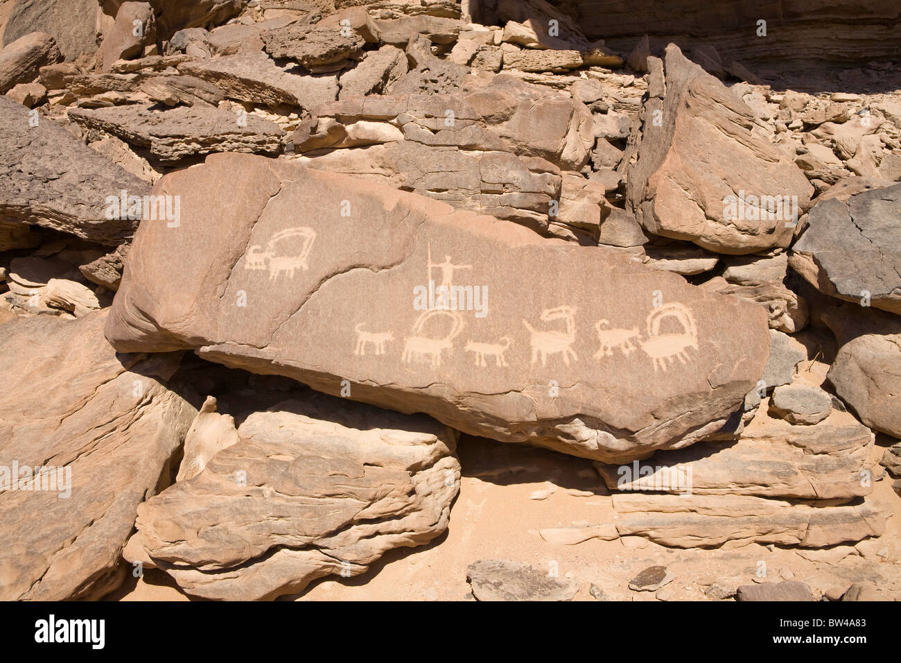 Ancient rock art showing depictions of man hunting  animals in the Eastern Desert of Egypt. - Stock Image
