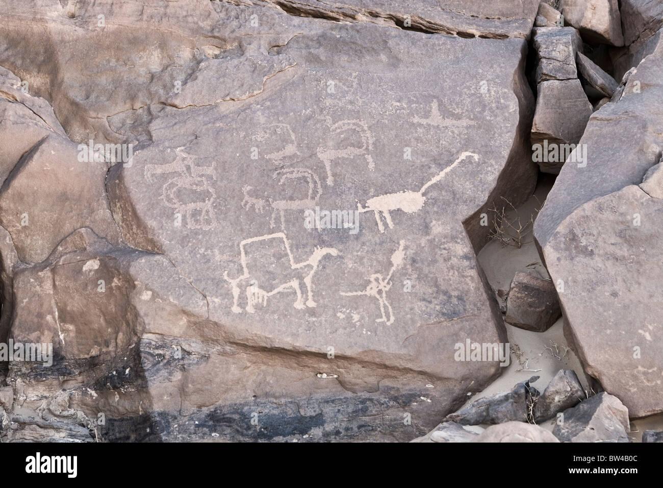 Petroglyphs of various animals in The Eastern Desert of Egypt - Stock Image
