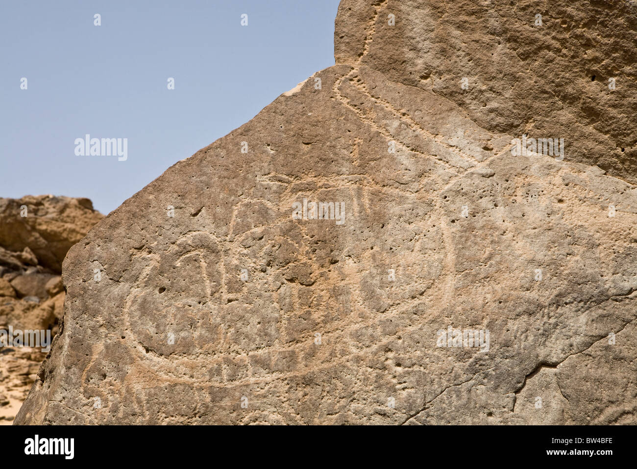 Petroglyph of boat and animals on a rock-face  in the Eastern Desert, Egypt - Stock Image
