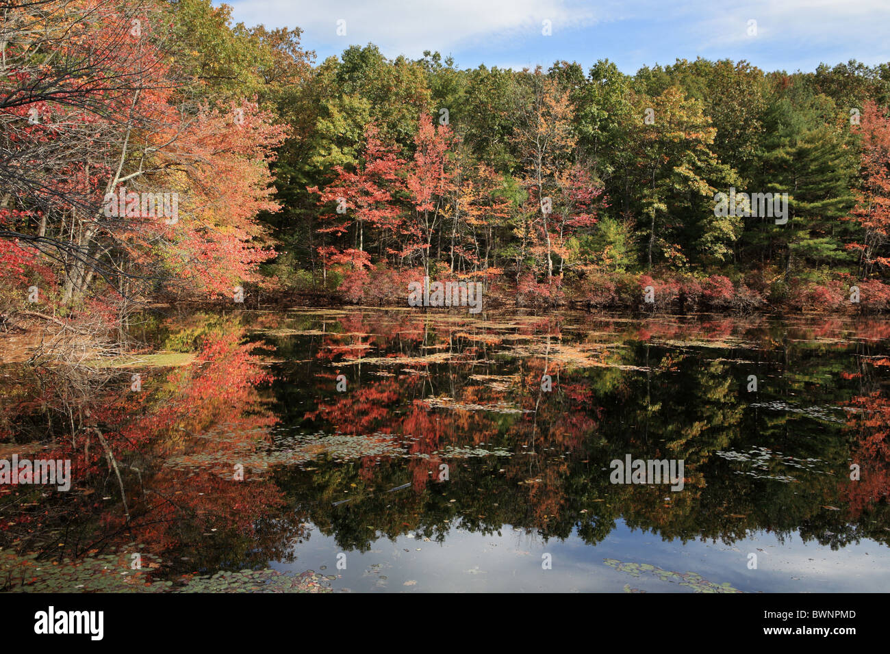 fall-colors-and-reflections-walden-pond-