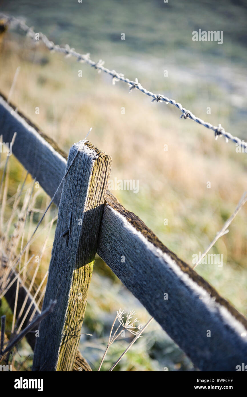 Light snow on wooden fence and barbed wire - Stock Image