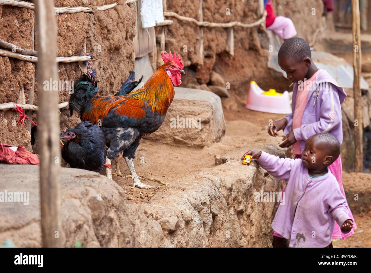 Rooster and girls playing in Kibera slums, Nairobi, Kenya - Stock Image