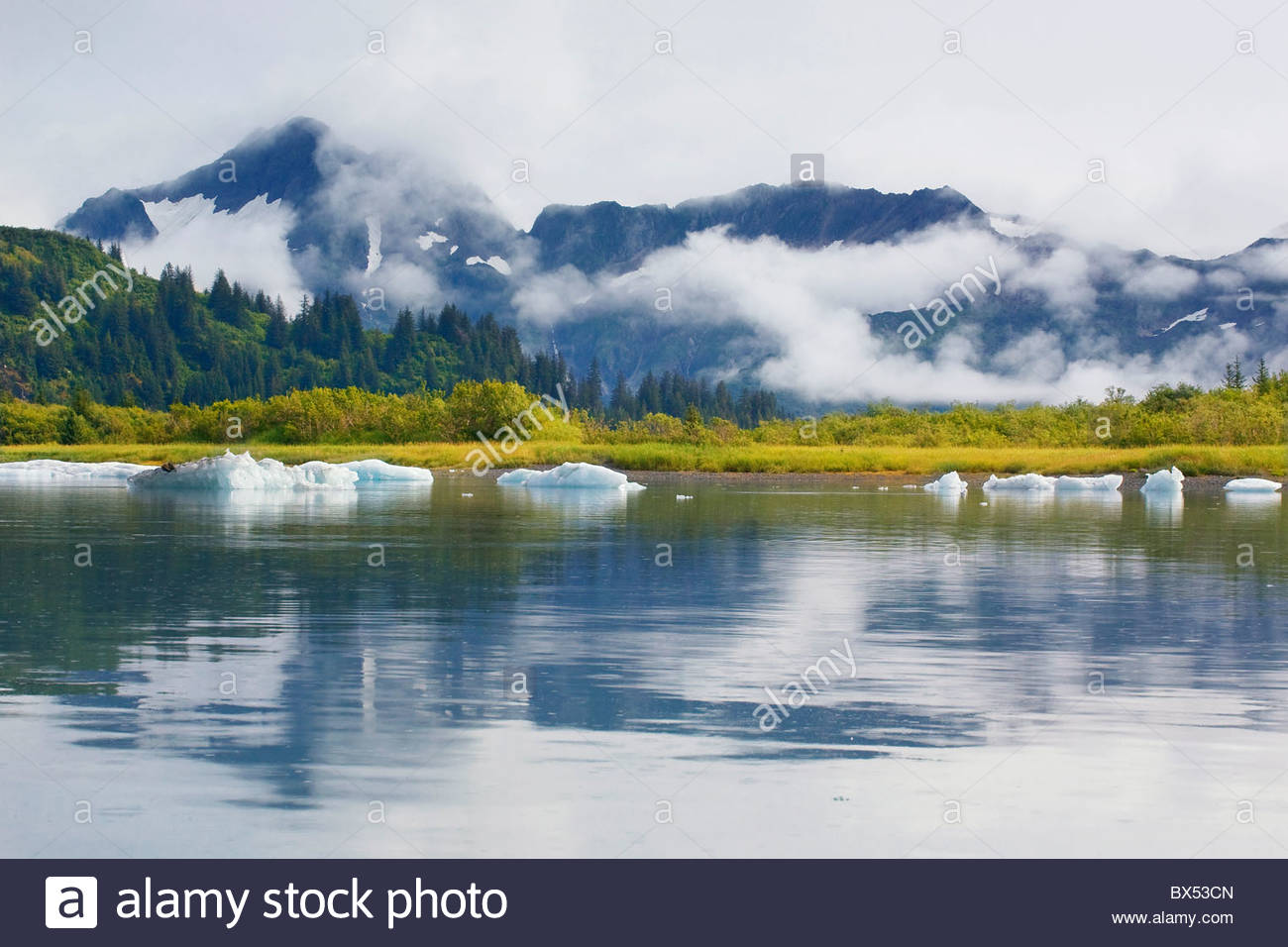 Icebergs add a sense of timelessness to the stunning scenery of the Upper Pedersen Lagoon in Kenai Fjords National - Stock Image