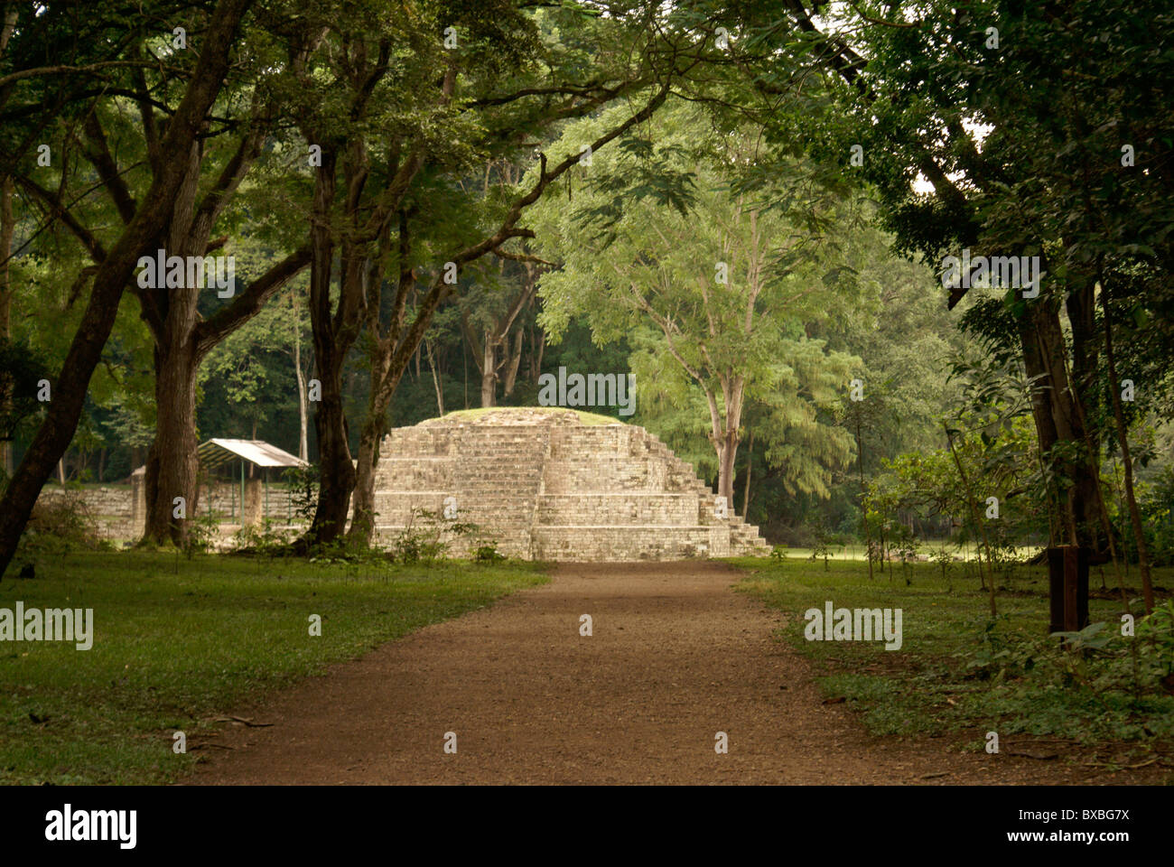 mayan-road-or-sacbe-leading-to-the-ruins
