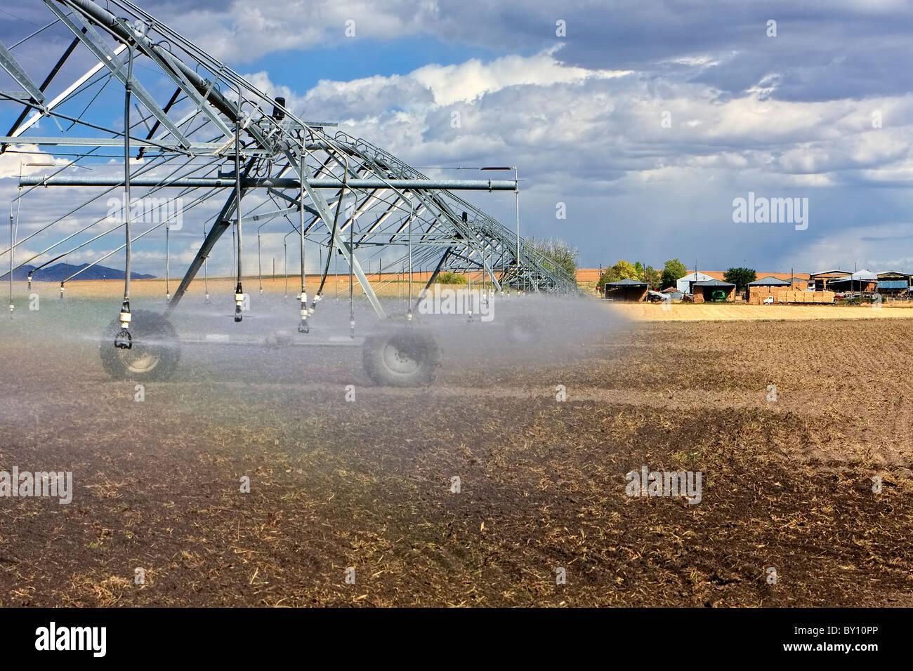 Agriculture watering/sprinklers - Stock Image