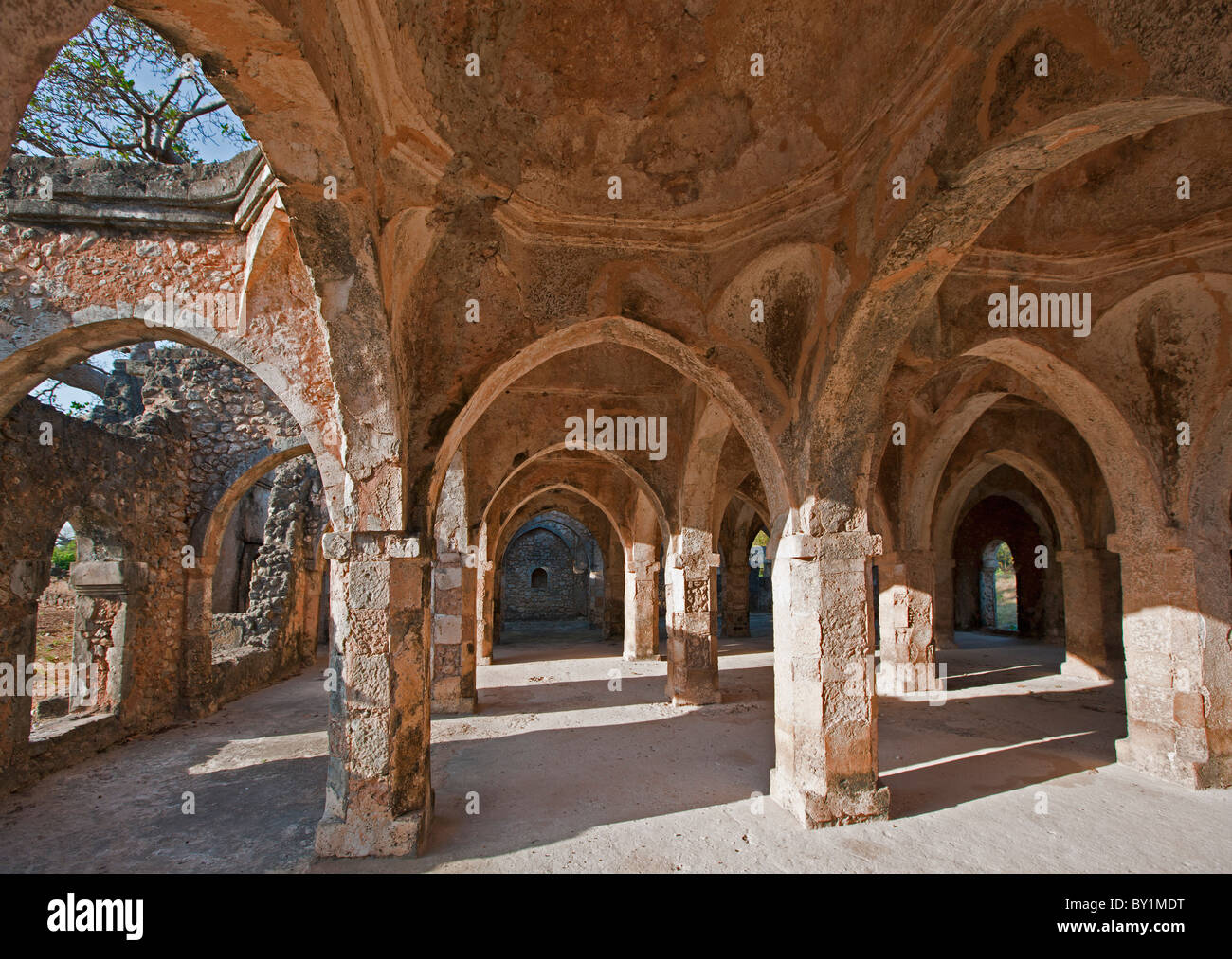 The magnificent ruins of the Great Mosque at Kilwa Kisiwani which was first built in the 10th and 11th centuries Stock Photo