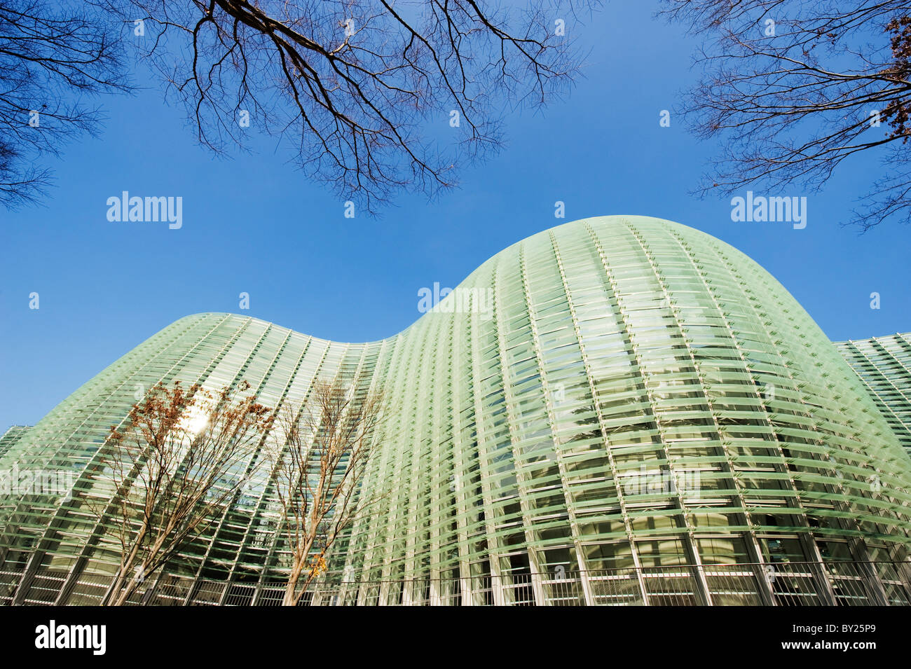 Asia, Japan, Tokyo, Roppongi ward, National Art Centre, NACT, designed by Kisho Kurokawa (2007) - Stock Image