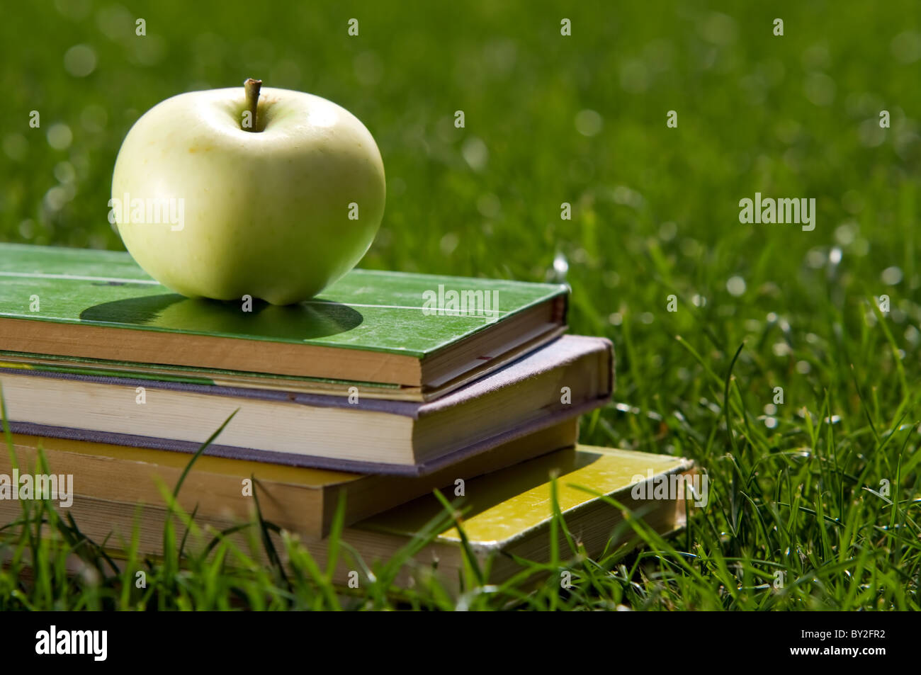 Apple on pile of books on grass. Education concept, back to school. - Stock Image