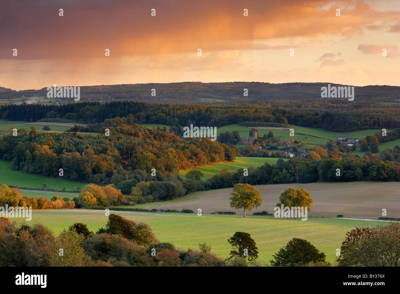 Views toward Albury and the Surrey Hills countryside - Stock Image