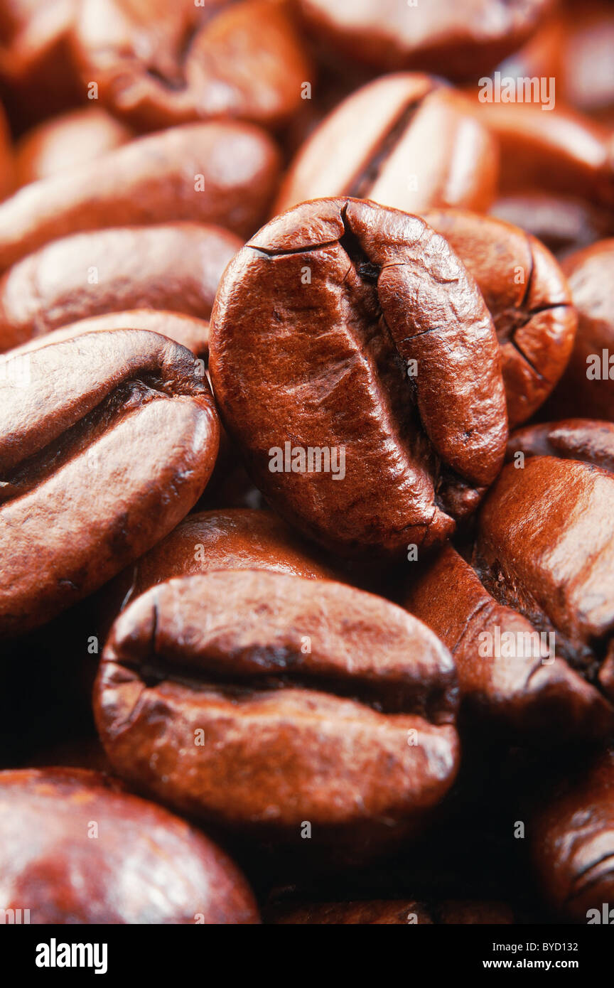 Coffee beans , super macro,vertical - Stock Image