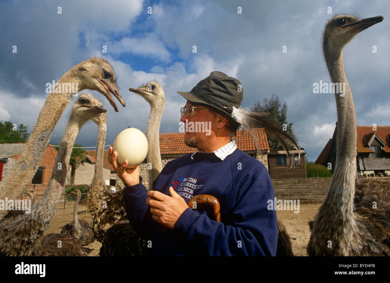 ostrich-farmer-robert-bailey-with-some-o