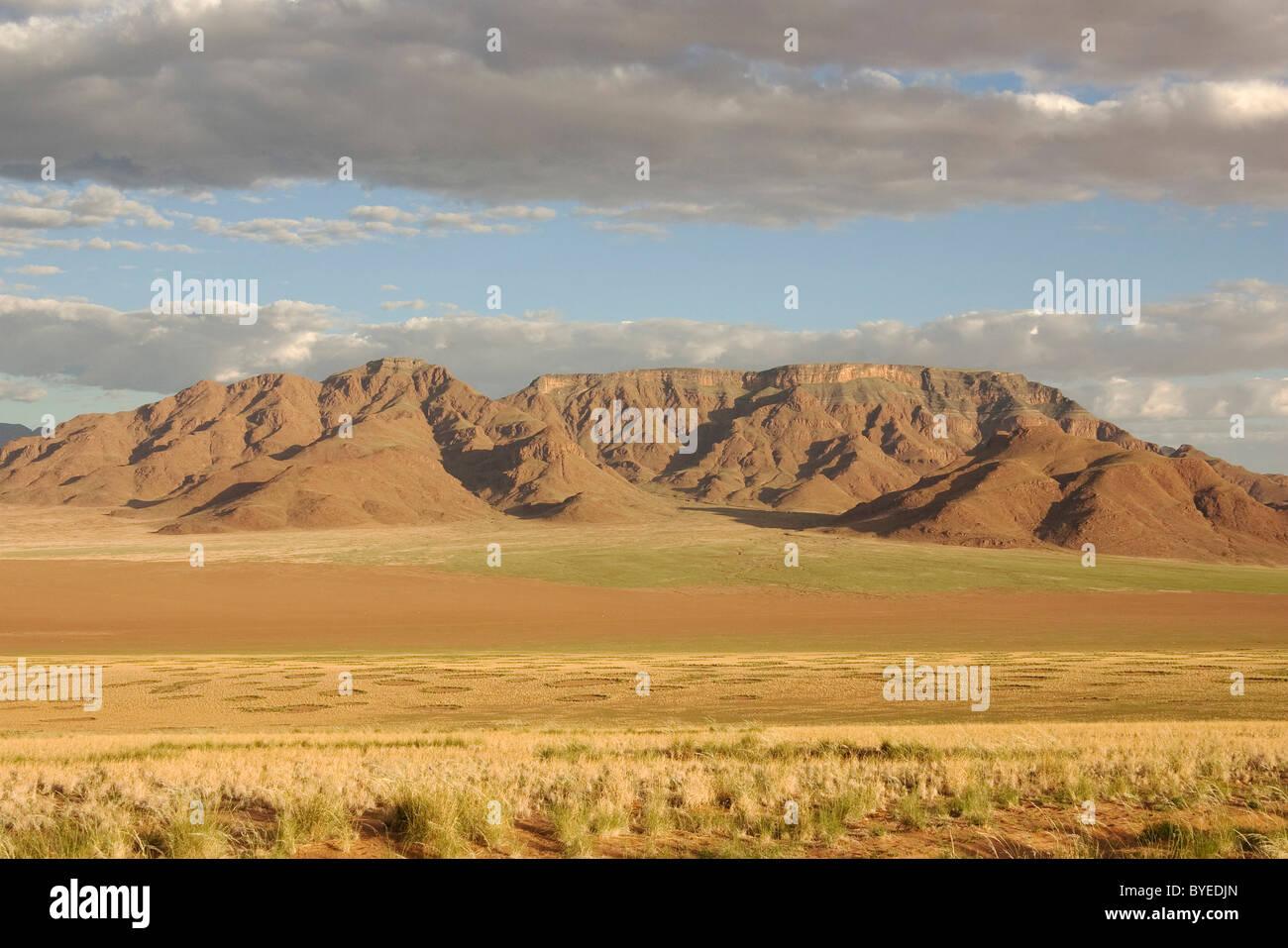 NamibRand Nature Reserve during the rainy season with green vegetation at the edge of the Namib Desert - Stock Image