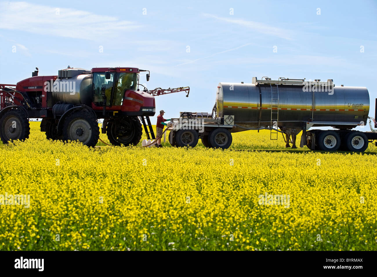 A farmer loads his high clearance sprayer with fungicide and water to spray a blooming canola crop for Sclerotinia - Stock Image