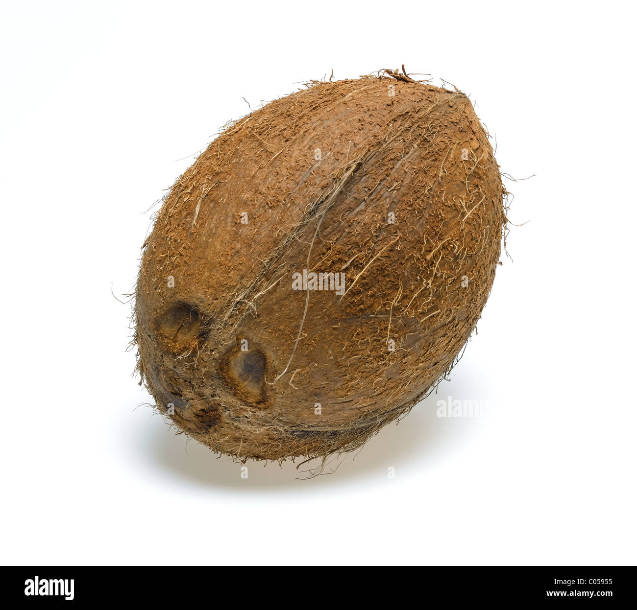 whole coconut cut out - Stock Image
