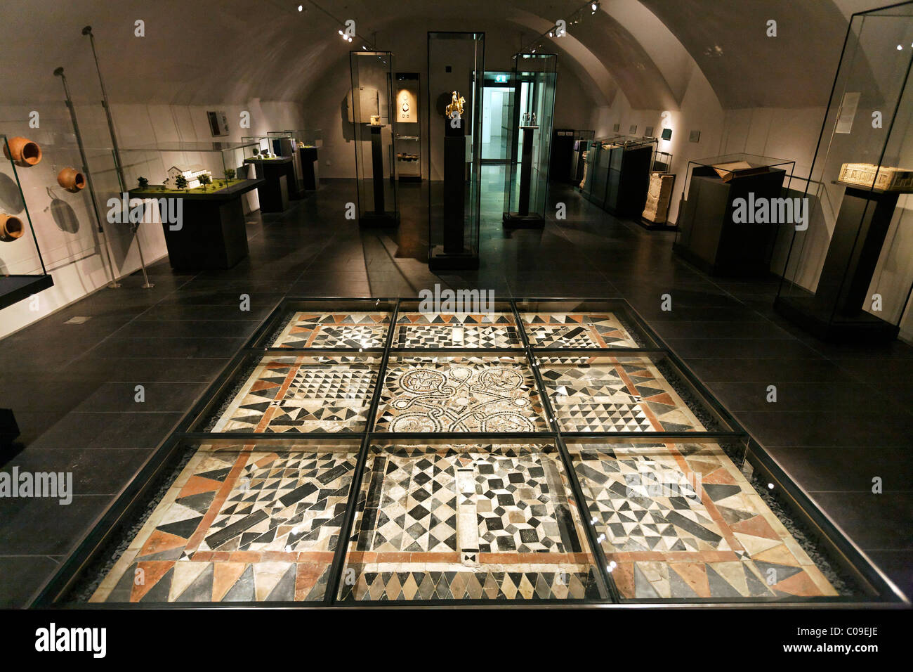 Exhibition Room With A Medieval Mosaic Floor Under Glass Stiftsmuseum Museum Xanten Monastery