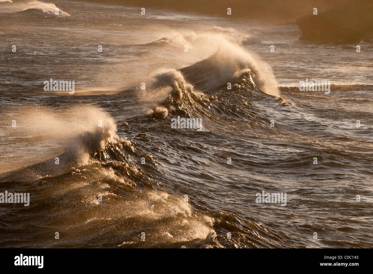 Wild waves at Punto San Carlos, Baja California, Mexico - Stock Image