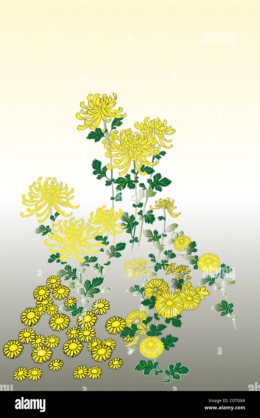 CG of Japanese Painting, Chrysanthemum - Stock Image